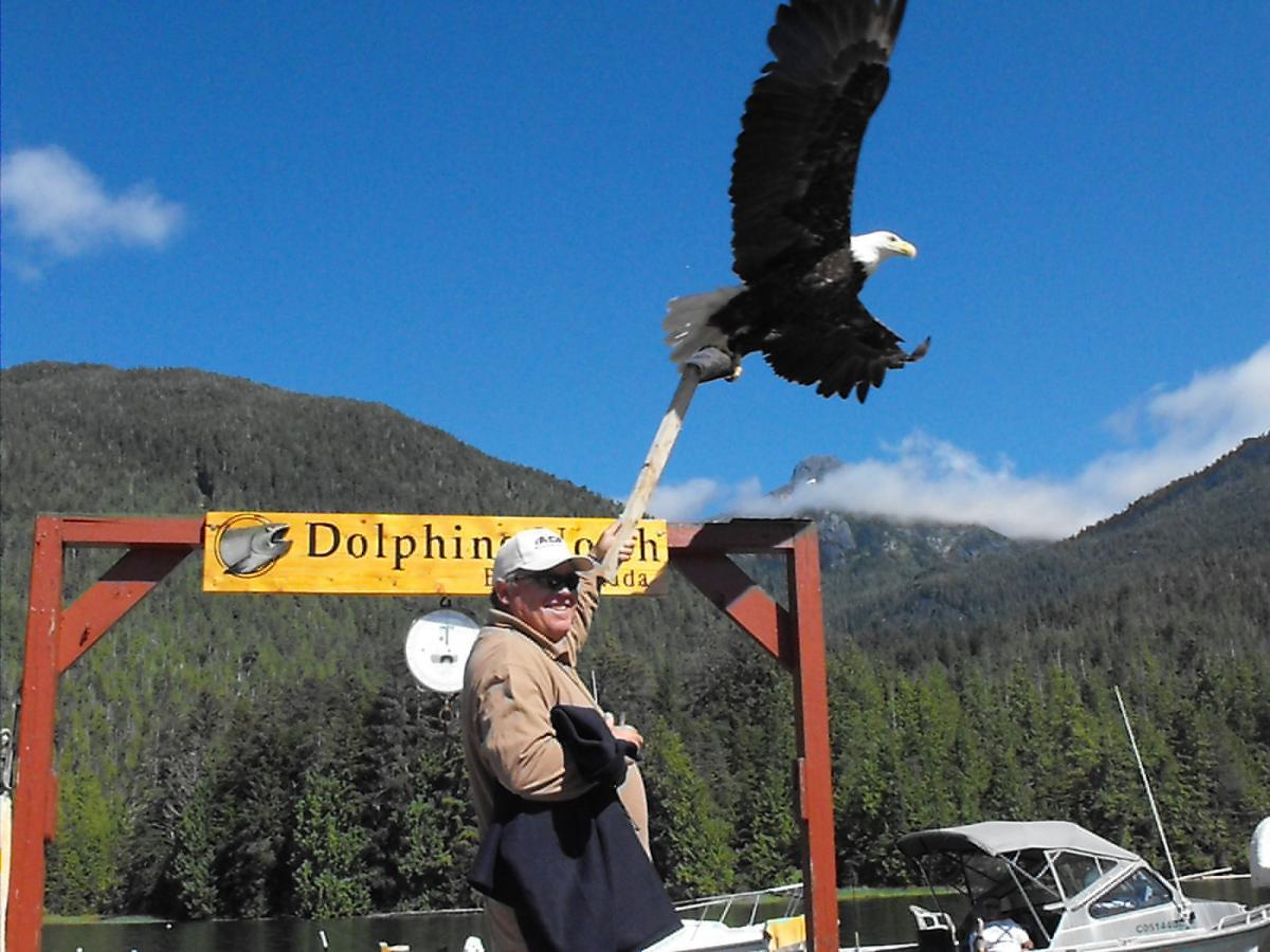 Wildlife Viewing - birds
